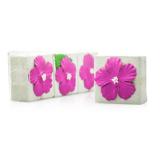 Reniu Eco Soap - 3 Pack